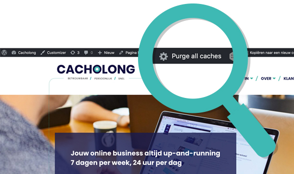 cacholong Wordpress optimaliseren plugin Purge all caches